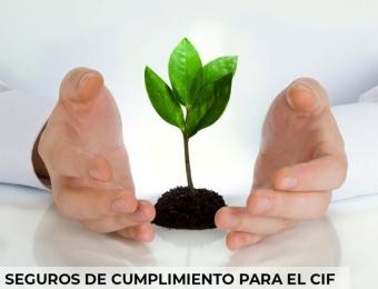 Seguro de cumplimiento para el Certificado de Incentivo Forestal CIF